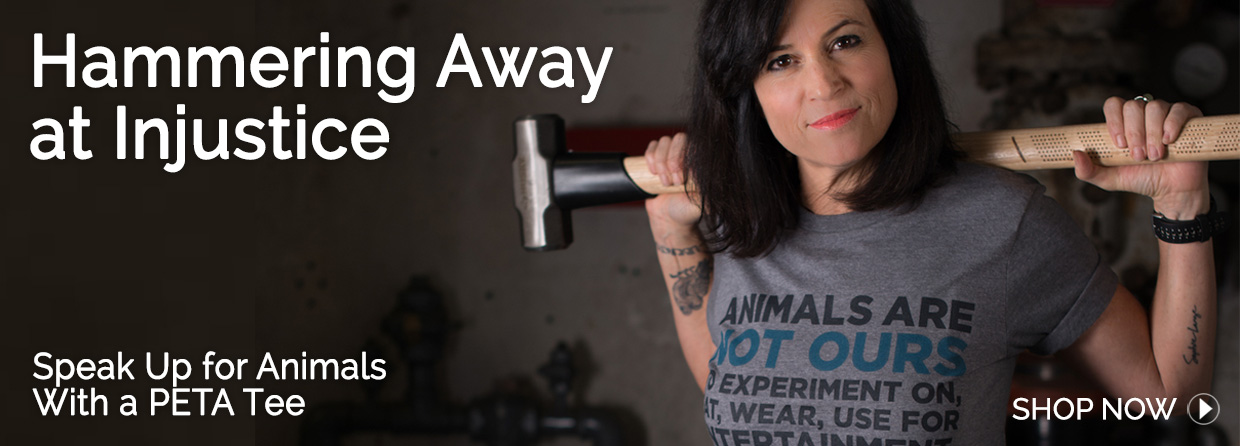Speak Up for Animals With a PETA Tee